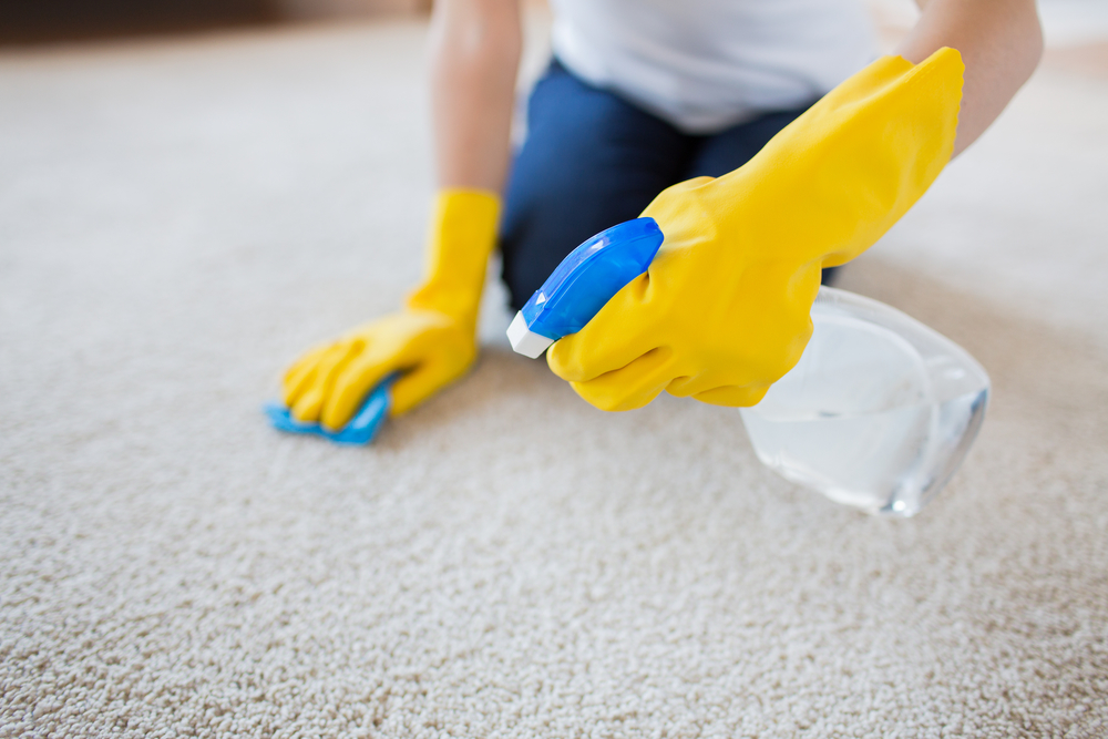 can a cleaning service in west palm beach remove stains